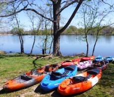 Paddle Fleet